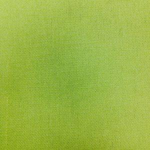 Toile Polyester - Pomme Verte