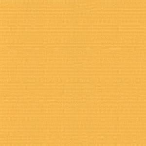 WEATHM8029352V-Yellow